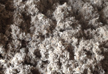 Newhaven Loose-fill Insulation